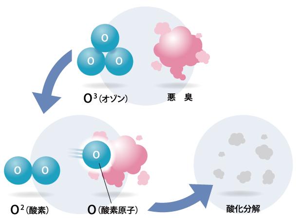 これは、オゾンには特有の臭いがあるため、人間は危険を察知して回避することができることと、オゾンの影響は個人差が大きく、我慢できなくなった濃度がその人の基準である、という考えによるもので、現実に日本を含めて、オゾンによる重大事故は一件も発生しておりません。 したがって、オゾンは、濃度コントロールを正しくして使用すれば、安全な物質と言えます。